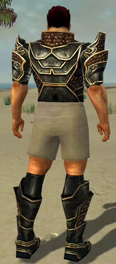 Warrior Kurzick Armor M gray chest feet back.jpg