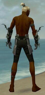 Assassin Elite Luxon Armor M gray arms legs back.jpg