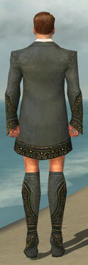 Mesmer Krytan Armor M gray chest feet back.jpg