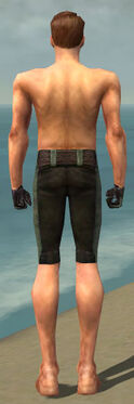 Mesmer Performer Armor M gray arms legs back.jpg