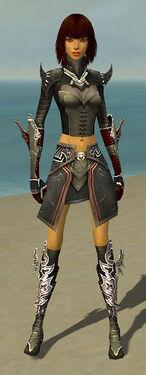 Assassin Deldrimor Armor F gray front.jpg