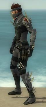 Assassin Elite Imperial Armor M gray side.jpg