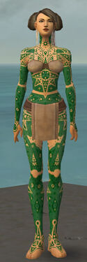 Monk Star Armor F dyed front.jpg