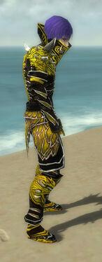 Necromancer Elite Luxon Armor M dyed side.jpg