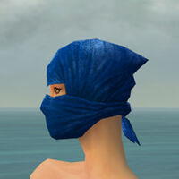 Mask of the Mo Zing F dyed side.jpg