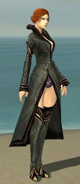 Mesmer Norn Armor F gray chest feet front.jpg