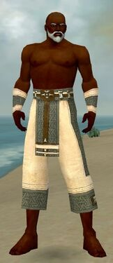 Monk Elite Saintly Armor M gray arms legs front.jpg