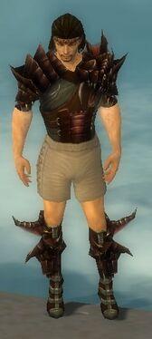 Ranger Primeval Armor M gray chest feet front.jpg