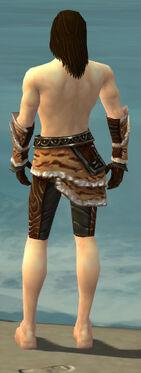 Ranger Vabbian Armor M gray arms legs back.jpg