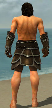 Warrior Shing Jea Armor M gray arms legs back.jpg