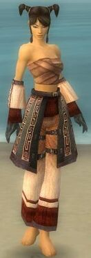 Monk Ancient Armor F gray arms legs front.jpg