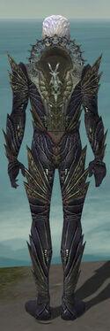 Necromancer Krytan Armor M gray back.jpg