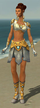 Paragon Monument Armor F dyed front.jpg