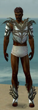 Paragon Primeval Armor M gray chest feet front.jpg