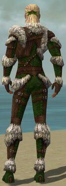 Ranger Elite Fur-Lined Armor M dyed back.jpg