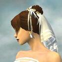 Wedding Couple Attire F dyed head side alternate.jpg
