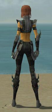 Assassin Luxon Armor F gray back.jpg