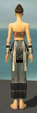 Monk Elite Sunspear Armor F gray arms legs back.jpg