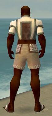 Monk Sacred Armor M gray chest feet back.jpg