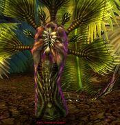 Rahti, Flower of Dread.jpg