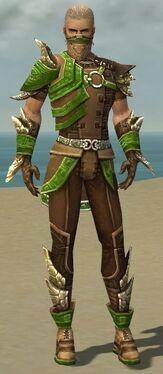 Ranger Asuran Armor M dyed front.jpg