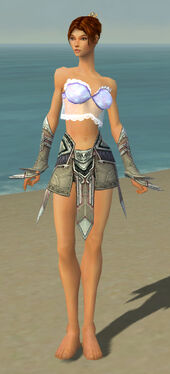 Elementalist Asuran Armor F gray arms legs front.jpg