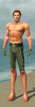 Mesmer Canthan Armor M gray arms legs front.jpg
