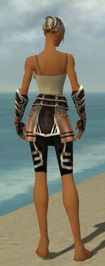 Warrior Ancient Armor F gray arms legs back.jpg