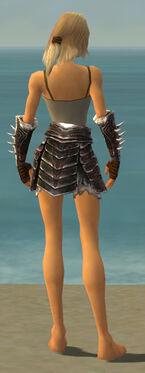 Warrior Norn Armor F gray arms legs back.jpg