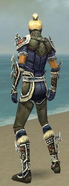 Assassin Norn Armor M gray back.jpg