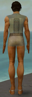 Dervish Istani Armor M gray chest feet back.jpg
