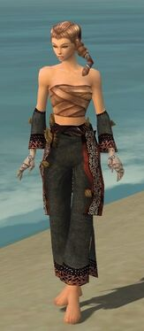 Monk Primeval Armor F gray arms legs front.jpg