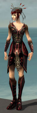 Necromancer Istani Armor F dyed front.jpg