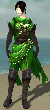 Ravenheart Witchwear F dyed front.jpg