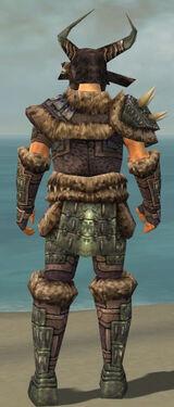 Warrior Charr Hide Armor M gray back.jpg