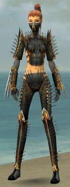 Assassin Exotic Armor F gray front.jpg