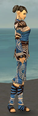 Monk Canthan Armor F dyed side.jpg