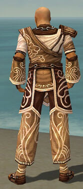 Monk Canthan Armor M dyed back.jpg
