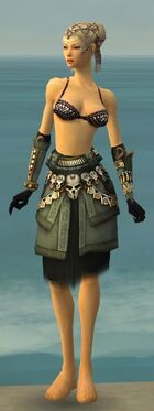 Ritualist Elite Imperial Armor F gray arms legs front.jpg