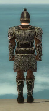 Warrior Canthan Armor M gray back.jpg
