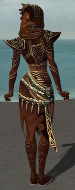 Xandra Armor Brotherhood Back.jpg