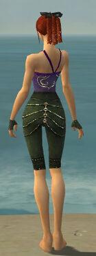 Mesmer Elite Luxon Armor F gray arms legs back.jpg