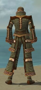 Monk Elite Kurzick Armor M gray back.jpg