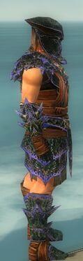 Warrior Luxon Armor M dyed side.jpg