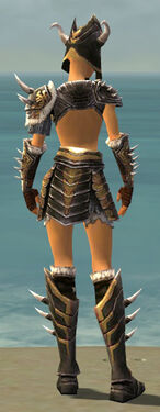 Warrior Norn Armor F dyed back.jpg
