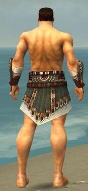 Warrior Vabbian Armor M gray arms legs back.jpg