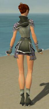 Elementalist Shing Jea Armor F gray back.jpg
