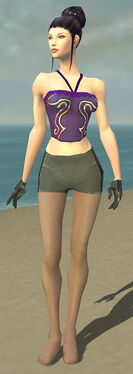 Mesmer Elite Enchanter Armor F gray arms legs front.jpg