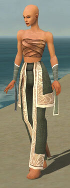 Monk Tyrian Armor F gray arms legs front.jpg