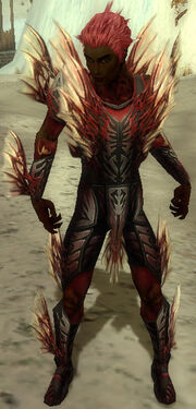Necromancer Primeval Armor M dyed front.jpg